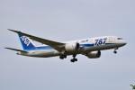 turenoアカクロさんが、成田国際空港で撮影した全日空 787-8 Dreamlinerの航空フォト(写真)