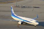 zero1さんが、中部国際空港で撮影した全日空 737-881の航空フォト(写真)
