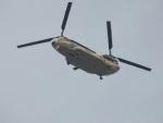 commet7575さんが、福岡空港で撮影した航空自衛隊 CH-47J/LRの航空フォト(写真)