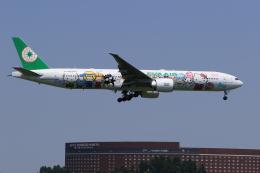 多楽さんが、成田国際空港で撮影したエバー航空 777-35E/ERの航空フォト(写真)
