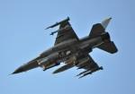 fortnumさんが、三沢飛行場で撮影したアメリカ空軍 F-16 Fighting Falconの航空フォト(写真)