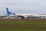 ゆういちさんが、鹿児島空港で撮影した全日空 737-881の航空フォト(写真)
