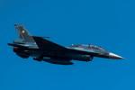 TBさんが、岩国空港で撮影した航空自衛隊 F-2Bの航空フォト(写真)