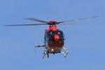 tecasoさんが、伊丹空港で撮影した毎日新聞社 EC135T1の航空フォト(写真)