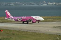 zoe.さんが、関西国際空港で撮影したピーチ A320-214の航空フォト(写真)