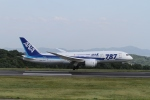 LEVEL789さんが、岡山空港で撮影した全日空 787-8 Dreamlinerの航空フォト(写真)