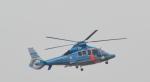 toyoquitoさんが、伊丹空港で撮影した兵庫県警察 EC155B1の航空フォト(写真)