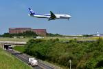 パンダさんが、成田国際空港で撮影した全日空 777-381/ERの航空フォト(写真)