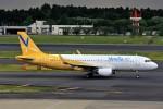 JA946さんが、成田国際空港で撮影したバニラエア A320-214の航空フォト(写真)