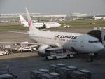 flyingmasさんが、羽田空港で撮影したJALエクスプレス 737-846の航空フォト(写真)