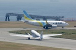 33407/495 ✈︎さんが、神戸空港で撮影したAIR DO 737-781の航空フォト(写真)