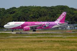 kopさんが、福岡空港で撮影したピーチ A320-214の航空フォト(写真)
