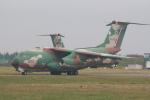 ごん太さんが、入間飛行場で撮影した航空自衛隊 C-1の航空フォト(写真)