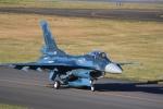 ごん太さんが、入間飛行場で撮影した航空自衛隊 F-2Aの航空フォト(写真)