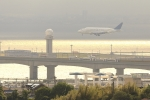 Rundy's Airgraphyさんが、中部国際空港で撮影したボーイング 747-4J6(LCF) Dreamlifterの航空フォト(写真)