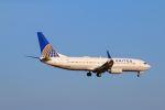 zero1さんが、成田国際空港で撮影したユナイテッド航空 737-824の航空フォト(写真)