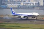 tomoyonさんが、羽田空港で撮影した全日空 777-281の航空フォト(写真)