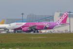 せぷてんばーさんが、成田国際空港で撮影したピーチ A320-214の航空フォト(写真)
