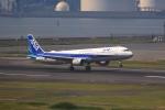 tomoyonさんが、羽田空港で撮影した全日空 A321-211の航空フォト(写真)