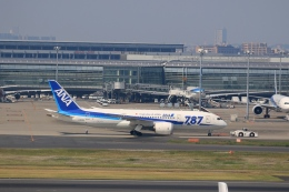 tomoyonさんが、羽田空港で撮影した全日空 787-8 Dreamlinerの航空フォト(写真)