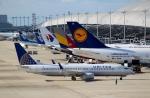 ハピネスさんが、関西国際空港で撮影したユナイテッド航空 737-824の航空フォト(写真)
