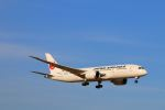 zero1さんが、成田国際空港で撮影した日本航空 787-8 Dreamlinerの航空フォト(写真)