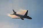 mameshibaさんが、成田国際空港で撮影したユナイテッド航空 777-224/ERの航空フォト(写真)