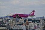 ポン太さんが、那覇空港で撮影したピーチ A320-214の航空フォト(写真)