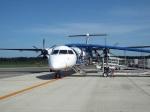 つっさんさんが、熊本空港で撮影したANAウイングス DHC-8-402Q Dash 8の航空フォト(写真)