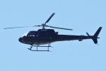 Wings Flapさんが、中部国際空港で撮影した日本法人所有 AS350B Ecureuilの航空フォト(写真)