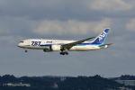 ポン太さんが、那覇空港で撮影した全日空 787-8 Dreamlinerの航空フォト(写真)