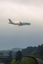 mameshibaさんが、成田国際空港で撮影したフェデックス・エクスプレス 777-FS2の航空フォト(写真)