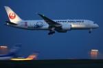 多摩川崎2Kさんが、羽田空港で撮影した日本航空 787-8 Dreamlinerの航空フォト(写真)