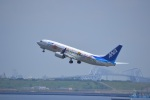 hirokongさんが、羽田空港で撮影した全日空 737-881の航空フォト(写真)