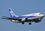 fortnumさんが、成田国際空港で撮影したANAウイングス 737-54Kの航空フォト(写真)