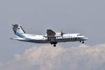sonnyさんが、羽田空港で撮影した海上保安庁 DHC-8-315Q MPAの航空フォト(写真)