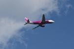 おかめさんが、成田国際空港で撮影したピーチ A320-214の航空フォト(写真)