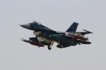 またぁりさんが、岐阜基地で撮影した航空自衛隊 F-2Aの航空フォト(写真)