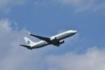 おかめさんが、成田国際空港で撮影した厦門航空 737-86Nの航空フォト(写真)