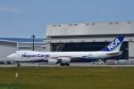 おかめさんが、成田国際空港で撮影した日本貨物航空 747-8KZF/SCDの航空フォト(写真)