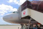 みのぽんさんが、那覇空港で撮影したジェットスター・ジャパン A320-232の航空フォト(写真)