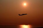 みのぽんさんが、中部国際空港で撮影したANAウイングス DHC-8-402Q Dash 8の航空フォト(写真)