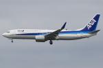 キイロイトリ1005fさんが、成田国際空港で撮影した全日空 737-881の航空フォト(写真)
