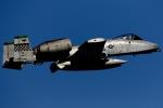 多摩川崎2Kさんが、横田基地で撮影したアメリカ空軍 A-10C Thunderbolt IIの航空フォト(写真)