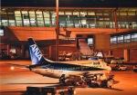 takamaruさんが、中部国際空港で撮影したANAウイングス 737-54Kの航空フォト(写真)