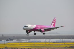fortnumさんが、仙台空港で撮影したピーチ A320-214の航空フォト(写真)