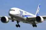 Koba UNITED®さんが、伊丹空港で撮影した全日空 787-8 Dreamlinerの航空フォト(写真)