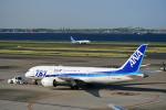 czuleさんが、羽田空港で撮影した全日空 787-8 Dreamlinerの航空フォト(写真)