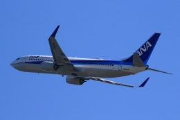 Semirapidさんが、高知空港で撮影した全日空 737-881の航空フォト(写真)
