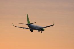 wagonist24wさんが、那覇空港で撮影したソラシド エア 737-81Dの航空フォト(写真)